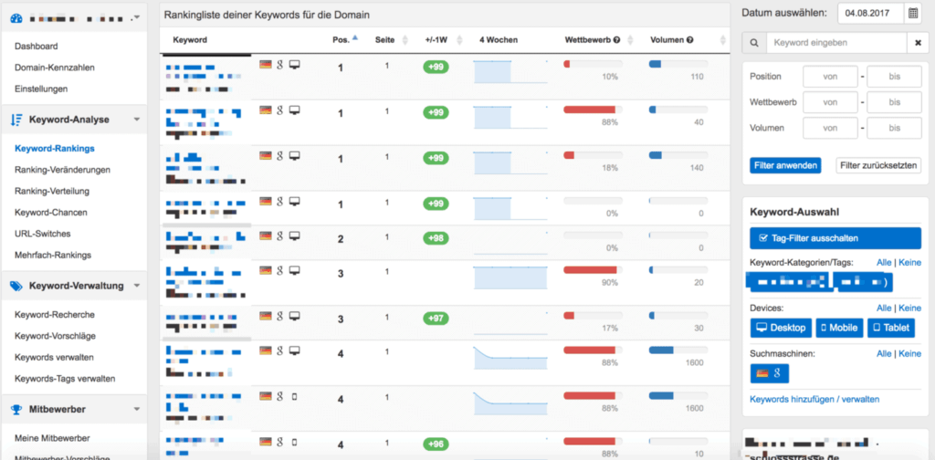 Screenshot der Keyword-Rankings auf Pagerangers.com