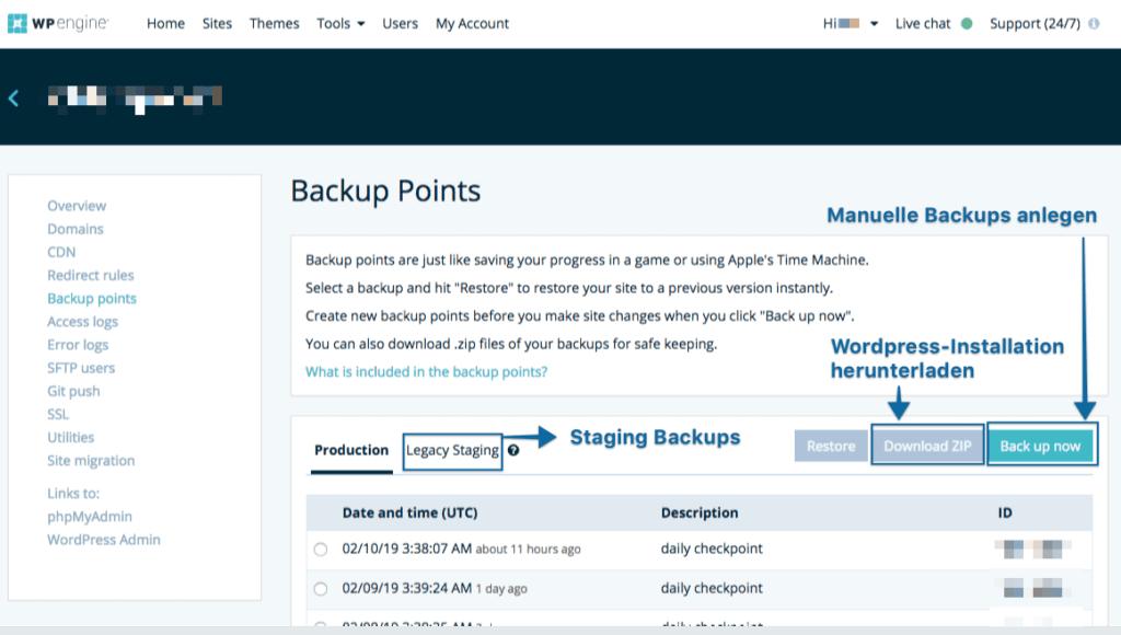 WPengine Backups-Interface